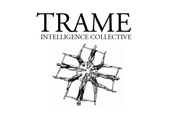 trame-intelligencecollective.jpg